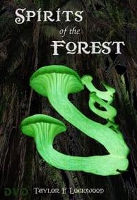 Spirits of the Forest - DVD