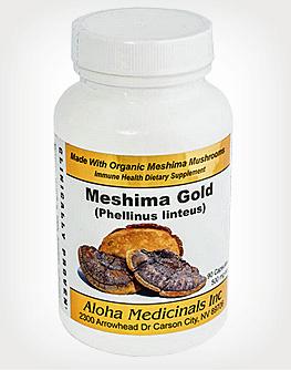 Meshima - Phellinus linteus mushroom