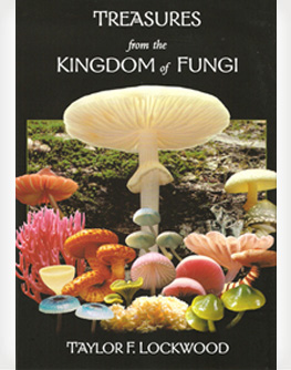 Treasures from the Kingdom of Fungi by Taylor F. Lockwood