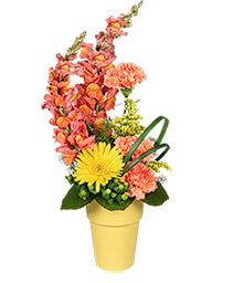 It's A Snap! Bouquet