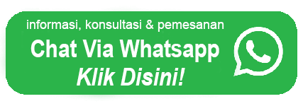 chat via Wa langsung