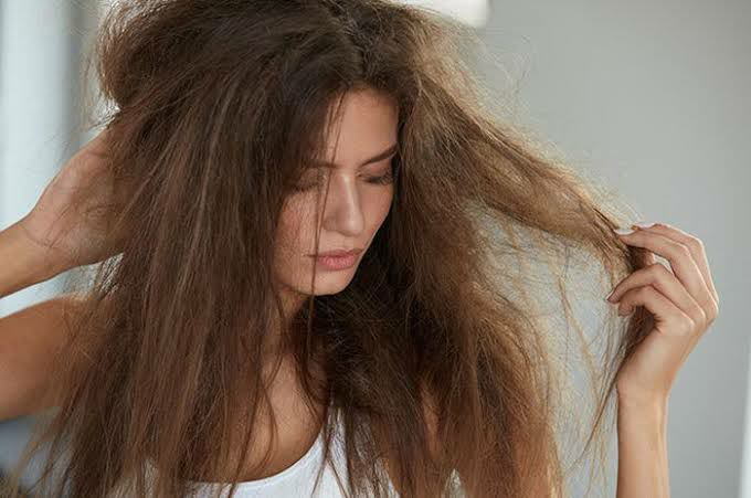 Traditional Way: Repair Dull and Dry Hair with kitchen ingredients