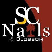 Capital nails columbia sc coupons