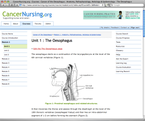 Figure 1. A page of content from a CancerNursing.org course