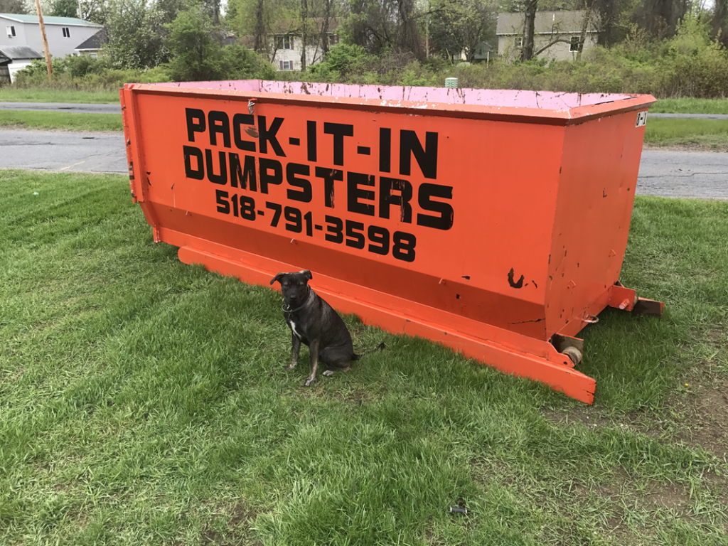 Pack-it-in Dumpsters - Large Dumpster