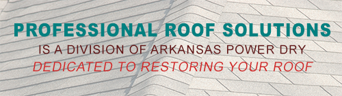 Professional Roof Solutions