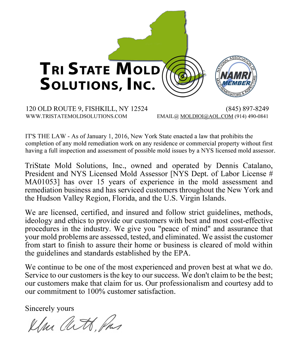 Tri State Mold Solutions - License Letter