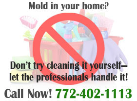 Sani Tech Environmental - Mold in your home graphic