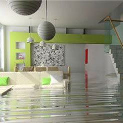 Sani Tech Environmental - Home Flooding
