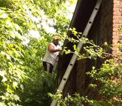 Mike's Window Cleaning and Gutter Services - Gutter Repair