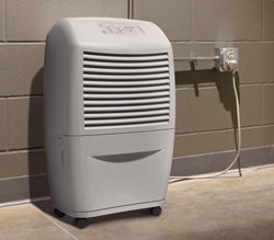 habitat safe solutions - Basement dehumidifier