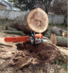 We use and recommend Stihl chainsaws