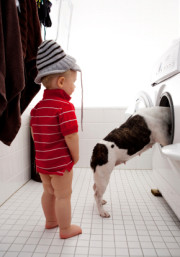 Elite Appliance Repair - Puppy and toddler checking out a broken dryer