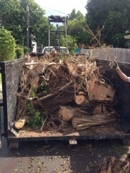 Mark Anthony Hauling Yard Debris In Truck