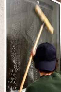 Spark Cleaning - window washer