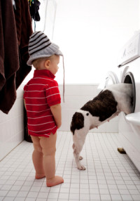 Alliance Appliance - Dog checking out a broken dryer