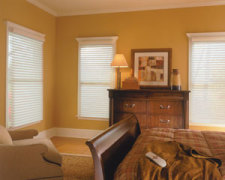 Comfortex Horizontal Mini Blinds