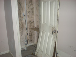 KEM ENvironmental Solutions- Mold Problem