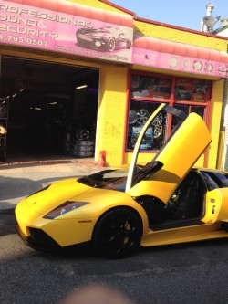Professional Sound & Security, Inc.-Lambo outside of shop