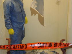 Custom Craft Environmental - Biohazard Removal