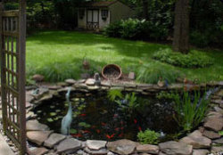 Mark Douglas Lawncare Inc. - Pond with grass