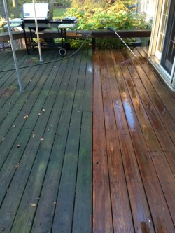 Capital Painting Services, LLC - Deck Staining