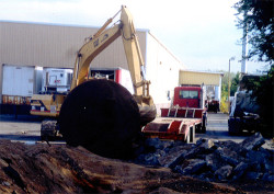 Capital Environmental Enterprises- Tank Removal