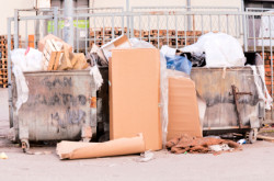 Signature Waste, LLC - Property Cleanouts