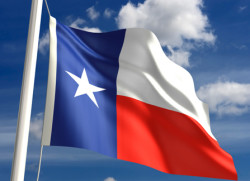 David B. Newman, LLC - Texas Flag
