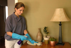 U.S. Maid- Cleaning