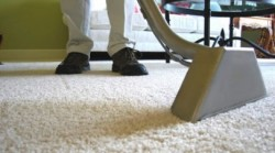 Discount Water Extraction - Carpet Cleaning Technician
