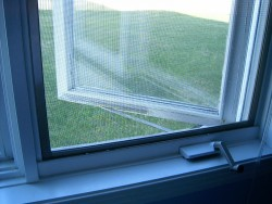 Eleet Glass & Mirror - Window screen