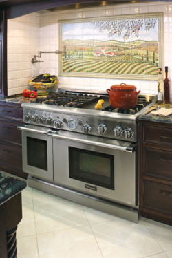 Raynor Appliance Service - Thermador Oven in Kitchen