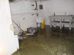 Custom Craft Environmental - Water Damage Basement