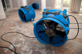 Discount Water Extraction - Damage Recovery Fans In Home