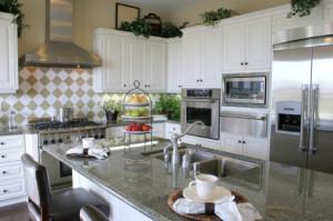 Ace Appliance Repair - Kitchen 2