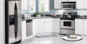 Essential Appliance, Inc.- Fridge and Dishwasher in a Kitchen