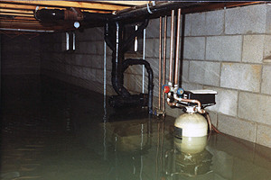 Quality Waterproofing - Basement Flood
