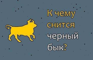 К чему снится черный бык с рогами