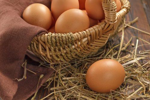 Сколько можно съесть яиц на голодный желудок