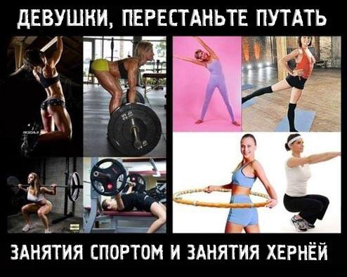 Готовые тренировки для девушек в тренажерном зале