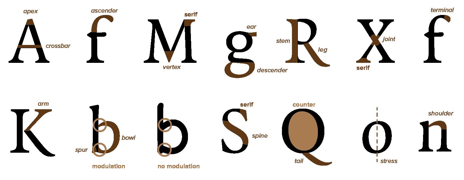 TypographyAdvancedTerminology