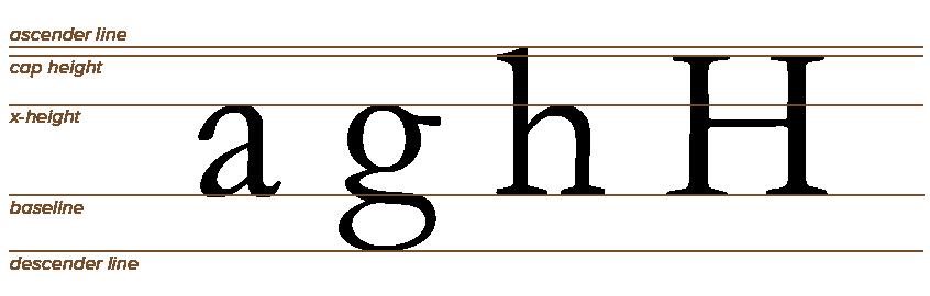 TypographyBasicTerminology