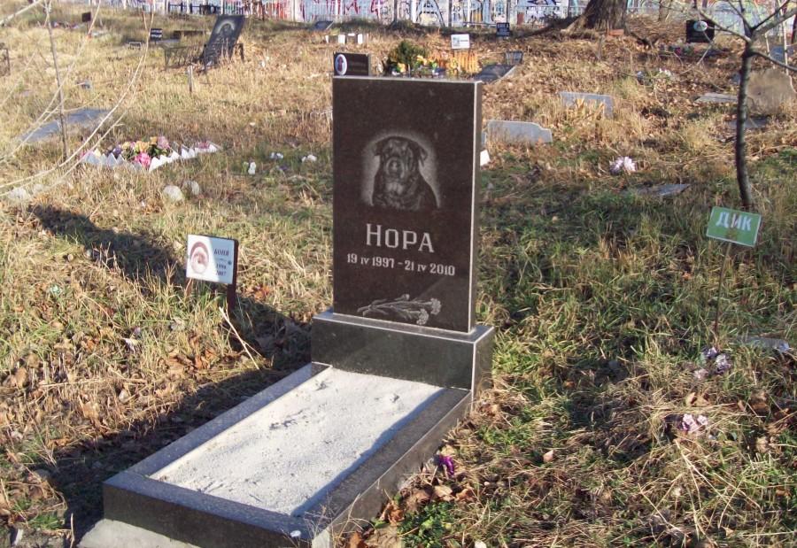 Кладбище домашних животных бизнес