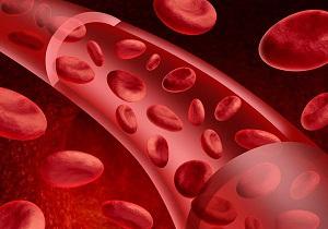 Уровень гемоглобина в крови норма для женщин