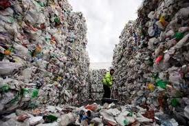 Сортировка мусора бизнес план