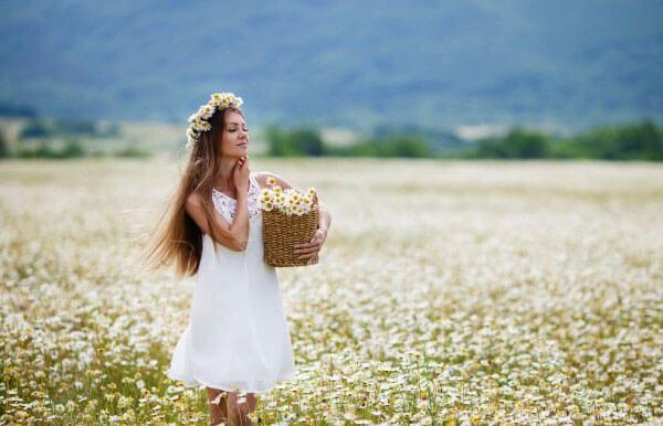 К чему снятся ромашки цветы