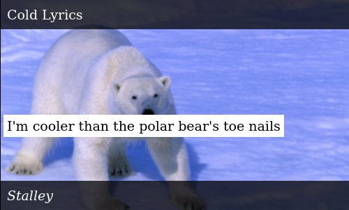 Cooler than a polar bears toenails lyrics
