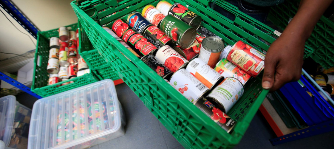 A green crate full of tins of food