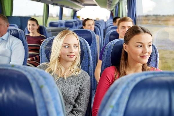 Места в междугороднем автобусе схема
